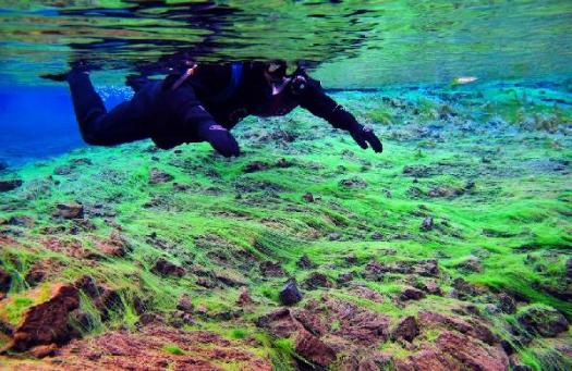 snorkeling-tour-in-iceland